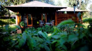 Arusha Coffee Lodges