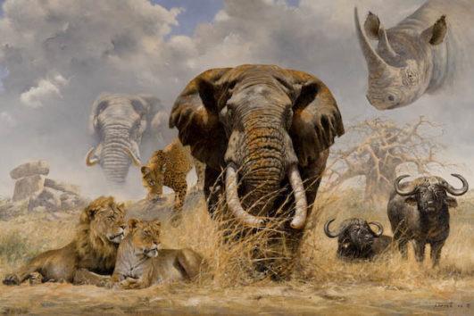 Большая африканская пятерка
